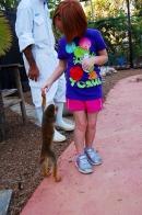 Capybara_Monkey-41